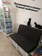 Клиника Ремонт животных, фото №2