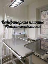 Клиника Ремонт животных, фото №7